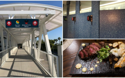Thanksgiving 2019: 5 Disney Parks Improvements We're Thankful For