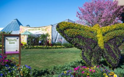 Garden Rocks Concert Series Lineup Announced, Details Revealed for 2020 Epcot Flower & Garden Festival