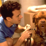 """Original Series Based on Touchstone's """"Turner and Hooch"""" In The Works for Disney+"""