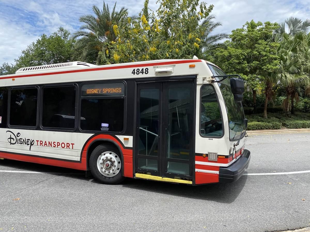 Photos Safety Precautions On Walt Disney World Resort Bus Laughingplace Com