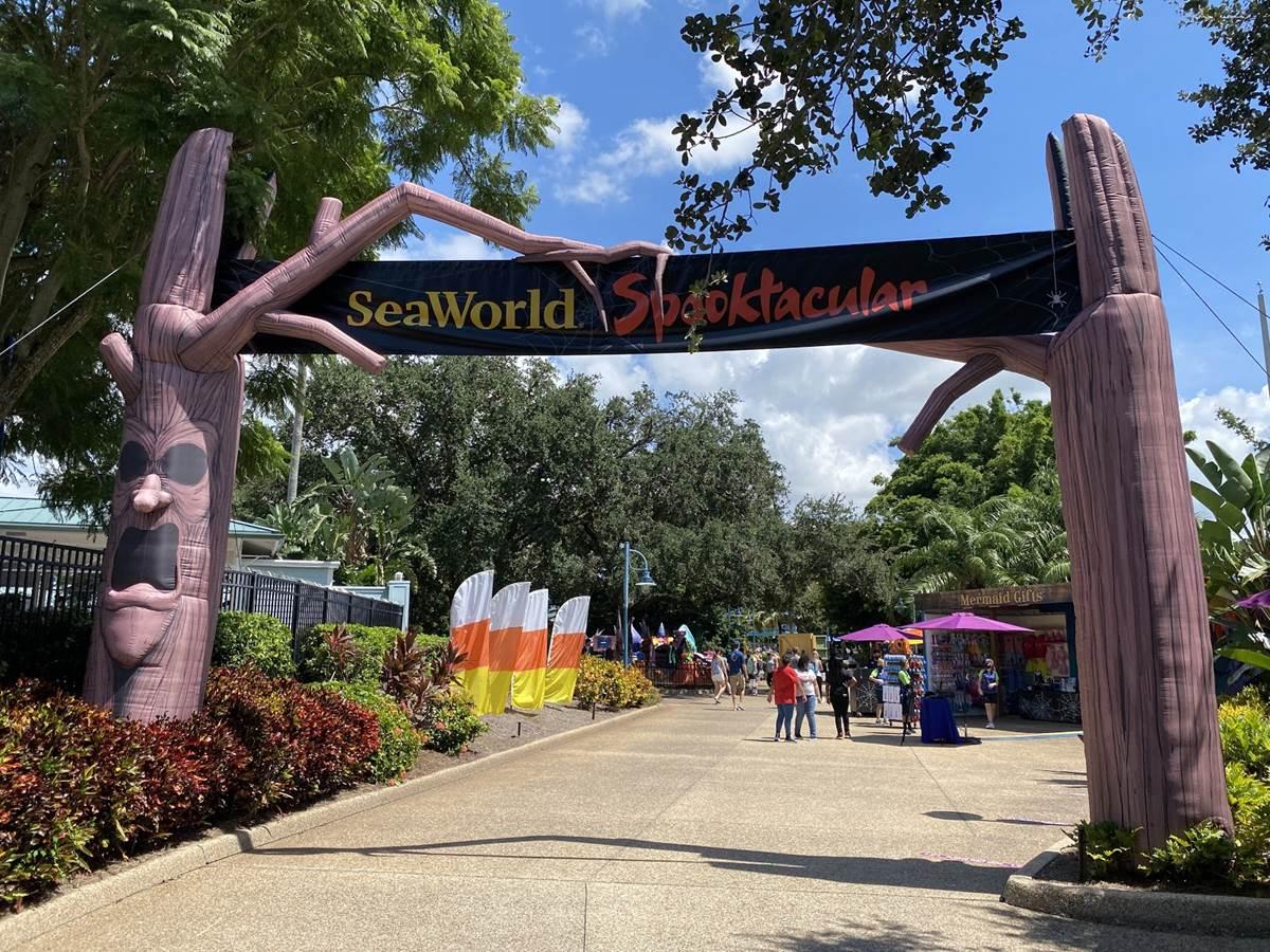 Halloween Event 2020 Paradise Bay A Look at SeaWorld Orlando's Spooktacular Halloween Event 2020