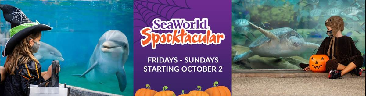 San Diego Christmas Events 2020 SeaWorld San Diego Announces Halloween and Christmas Events Plus