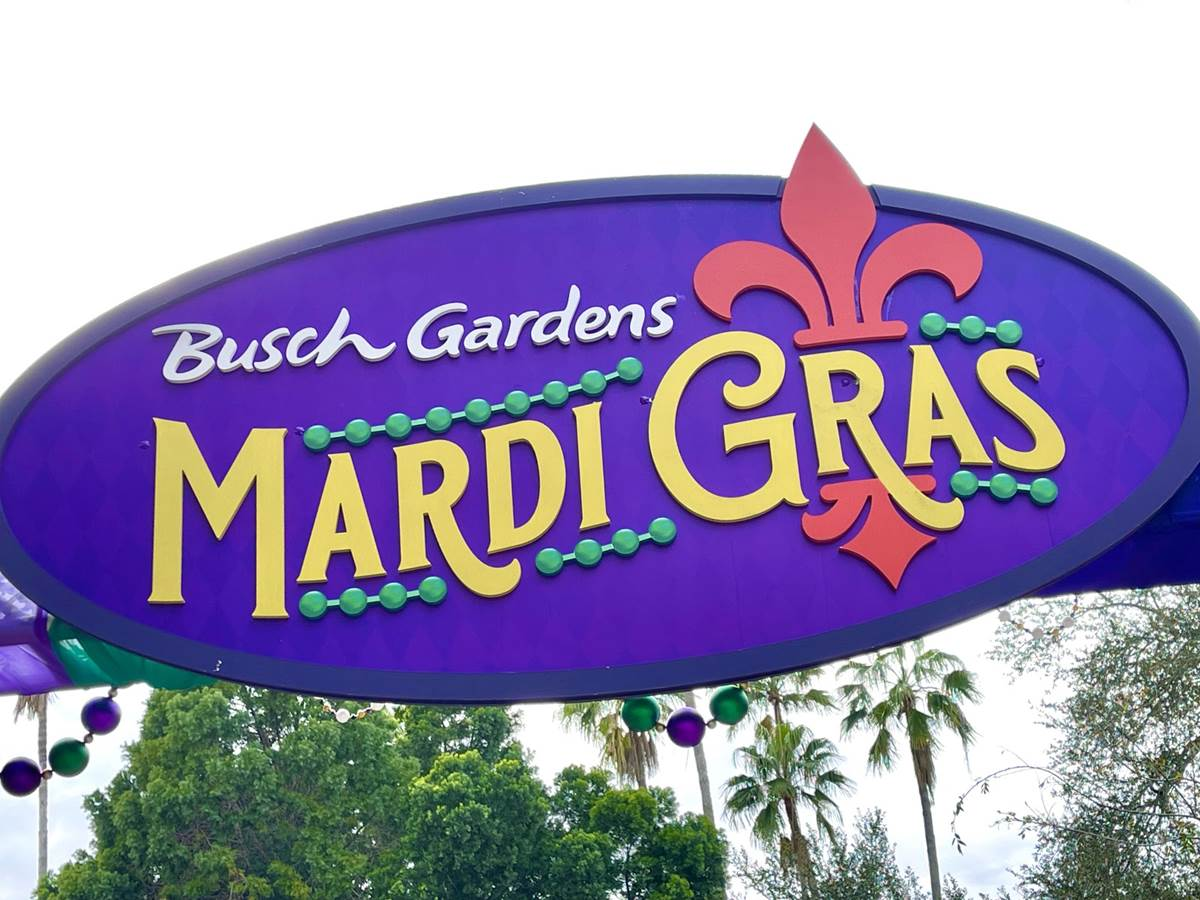busch gardens tampa gets jazzed up with mardi gras celebration - How Much Do Busch Gardens Performers Make