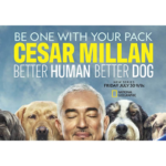"""""""Cesar Millan: Better Human Better Dog"""" Premieres July 30 on National Geographic"""