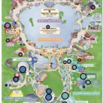 WDW 50 - The Ideal Epcot Attraction Lineup